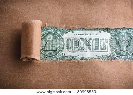 Back of one dollar macro through torn paper