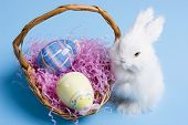 stock photo of easter bunnies  - easter bunny with a wooden basket and two easter eggs - JPG