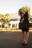 Business Woman Looking Through Briefcase