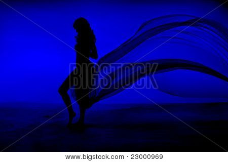 Naked Sexy Woman Silhouette Stay At Blue Sea And Sky Background