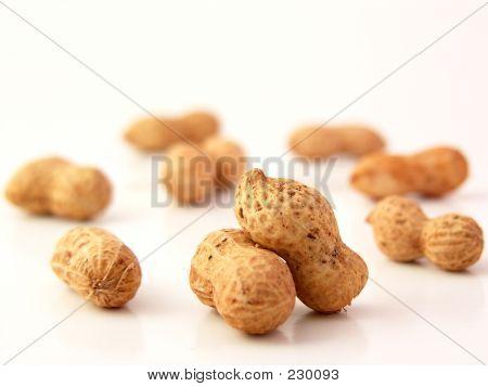 Peanuts 02