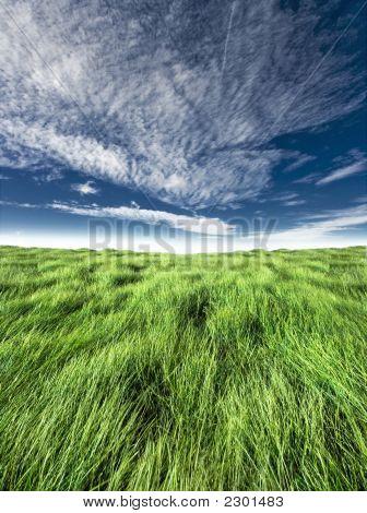 Blue And Green Horizon