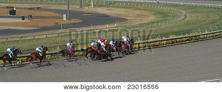 Horse Racing in San Diego