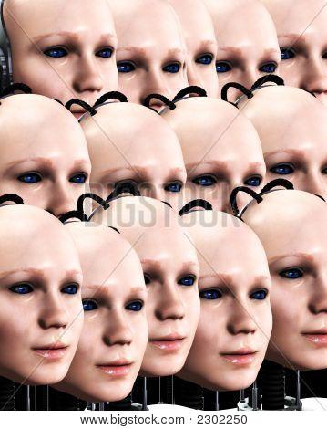 Lots Of Robo Women