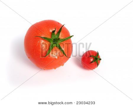 Tomato compared to cherry tomato