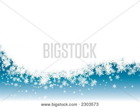 Nieve Reveal