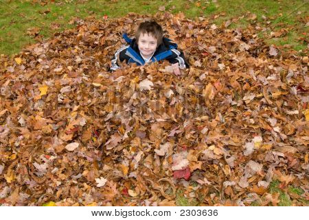 Young Boy In A Pile Of Autumn Leaves
