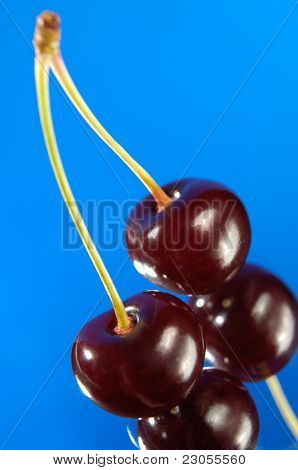 Stock photo of Two cherries close-up Isolated silhouette over blue background