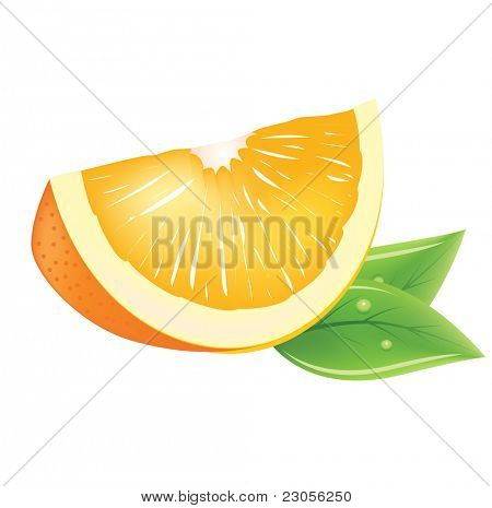 Realistic vector piece of orange with fresh leaves