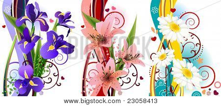 Three beautiful spring floral elements with irises, lilies and daisies