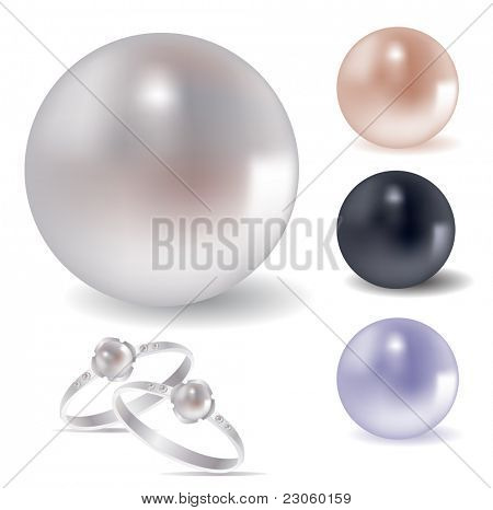 Vector collection of different pearls