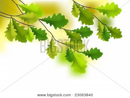 Defocused background with green oak leaves
