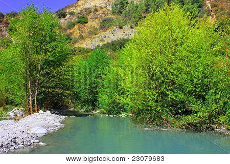 Riparian River