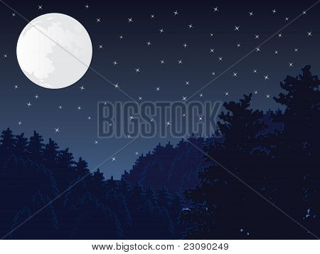 Full moon night scene vector