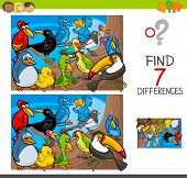 Find Differences With Birds Animal Characters poster