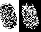 Thumbprints