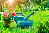 Home gardening and flower-growing still-life of flower in pot with watering can garden tools on gree poster