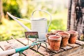 Close Up Of Garden Tools In The Garden. Hoe, Cultivator, Watering Can And Flower Pots On The Wooden  poster