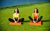 Sexy Women Athletes Do Yoga Exercises, Training. Women Training On Green Grass, Sport. Energy, Energ poster