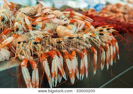 Langoustines At Fish Market