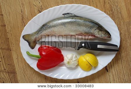 Trout On Plate