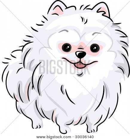 Illustration Featuring a White Pomeranian