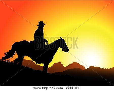 Cowboyhorse
