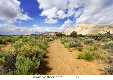Path To The Redrock Mountains In Snow Canyon - Utah