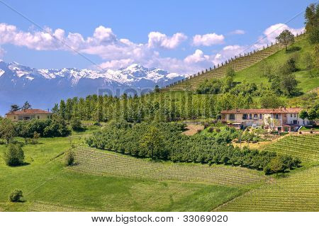 Rural houses on green hill and mountains with snowy peaks in Piedmont at spring, Italy.