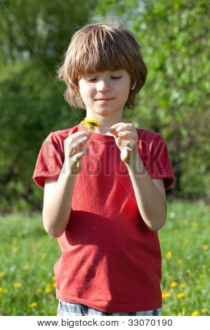 Boy With Dandelion In The Hands Of