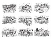 Vineyard Landscape. Farm Grape Fields With Houses Agricultural Hand Drawn Vector Illustrations. Farm poster