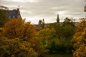 Beautiful Autumn Landscape. Trees With Yellow Leaves Against The Sky. Denmark, Copenhagen poster