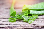 Aloe Vera Plant Slice On Rustic Wood Background / Close Up Of Fresh Aloe Vera Leaf With Gel Natural  poster