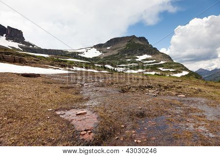 Soggy Snow Melt Creek