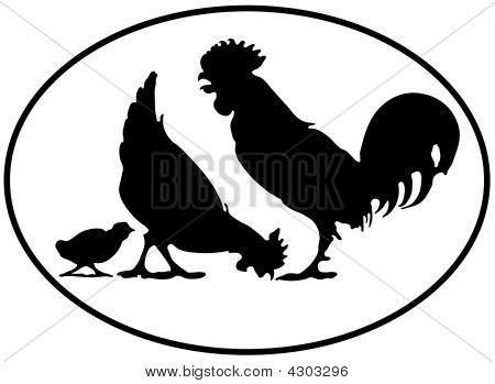 Chickenfamily With Black Orval Border