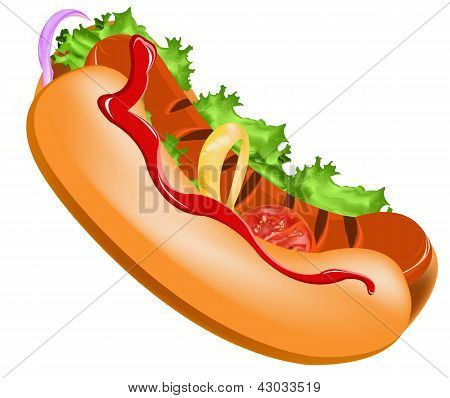 Delicious hot dog on a white background.