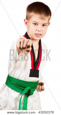 Young sportsman training karate.