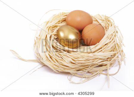 Golden Egg Finance Concept