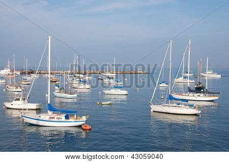 Small group of sail boats in a marina