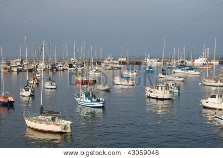 Large group of sail boats in a marina