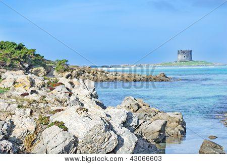 Seaboard Rocks