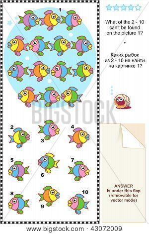 Colorful fish visual logic puzzle