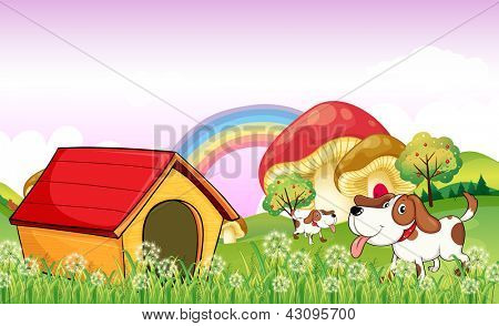 Illustration of a doghouse near the weeds