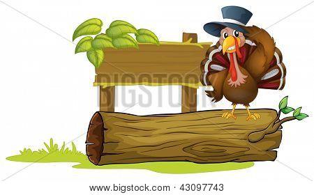 Illustration of a turkey above a trunk beside an empty signboard