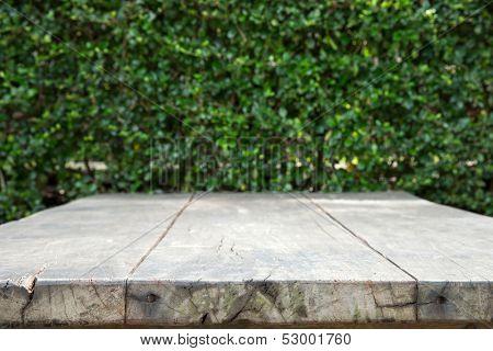 empty table in garden