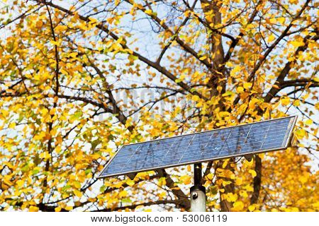 Outdoor Solar Battery Panel And Tree