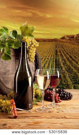 Detail of wine with keg on vineyard