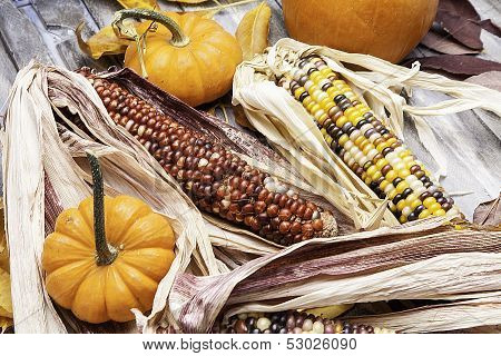 Gourds and Corn