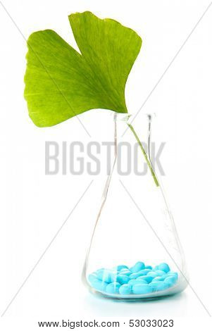 Ginkgo biloba leaf and pills in test tube, isolated on white