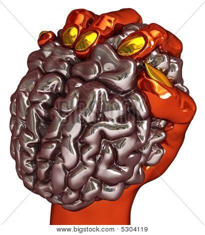 Brain Grasp